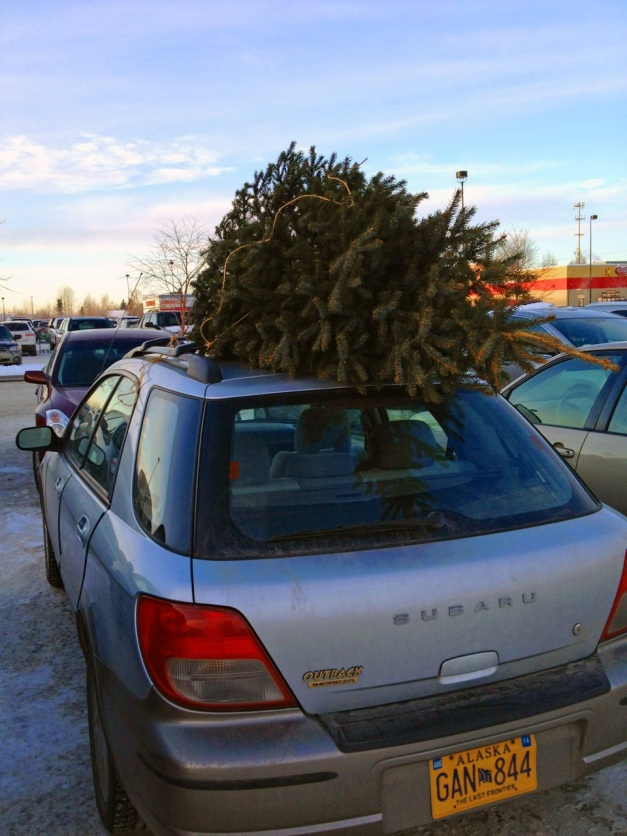 December 16, 2012: Parking Lot Christmas Tree